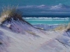 AS-14-Coastal-Dunes-r